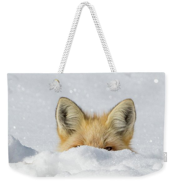 Watchful Eye Weekender Tote Bag