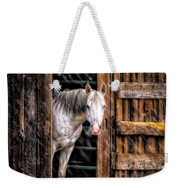 Watching The Snow Fall Weekender Tote Bag