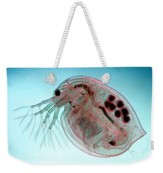 Water Flea Daphnia Magna Weekender Tote Bag