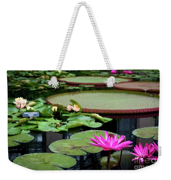 Water Lilies And Lily Pads Weekender Tote Bag