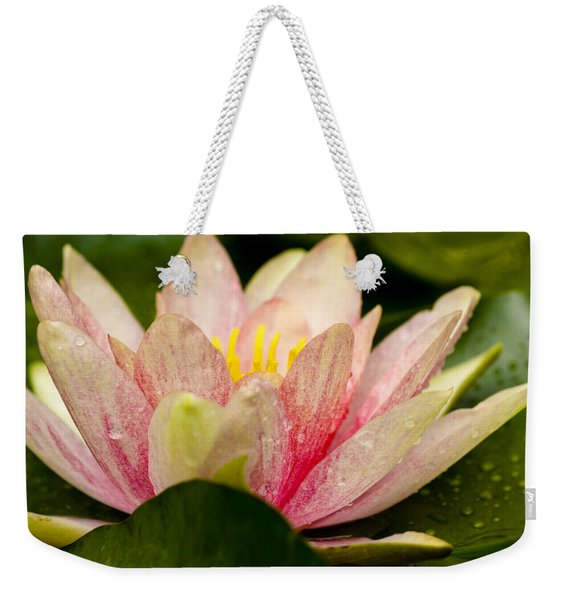 Water Lilly At Eye Level Weekender Tote Bag
