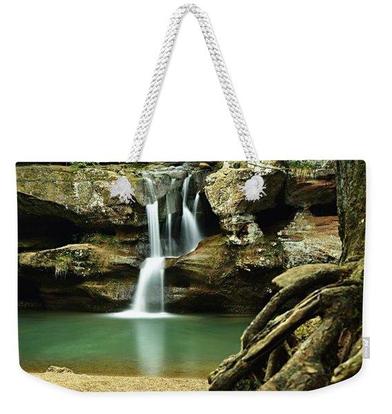 Waterfall And Roots Weekender Tote Bag