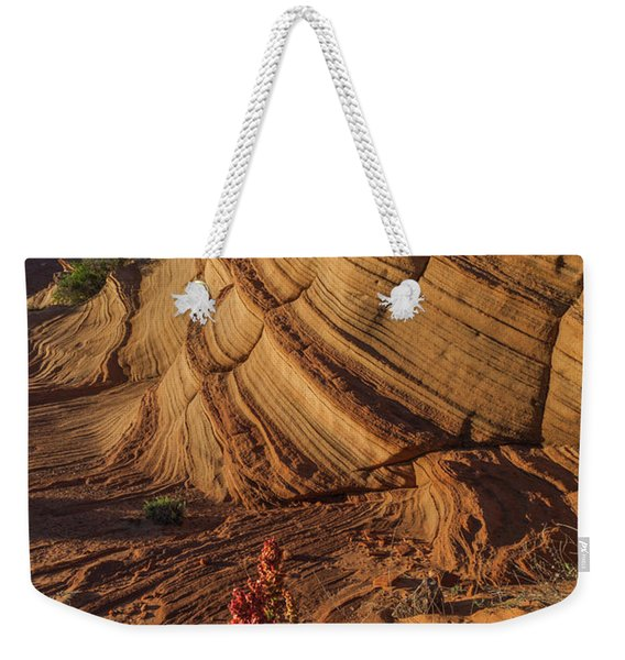 Waterhole Canyon Evening Solitude Weekender Tote Bag