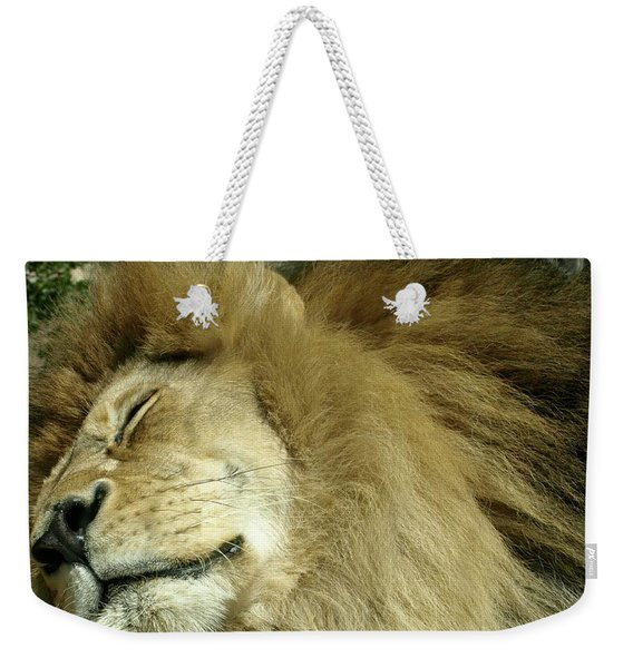 We All Like To Pass As Cats Weekender Tote Bag
