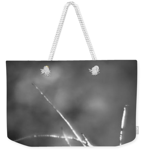 Weekender Tote Bag featuring the photograph Weeds 1 by Catherine Sobredo
