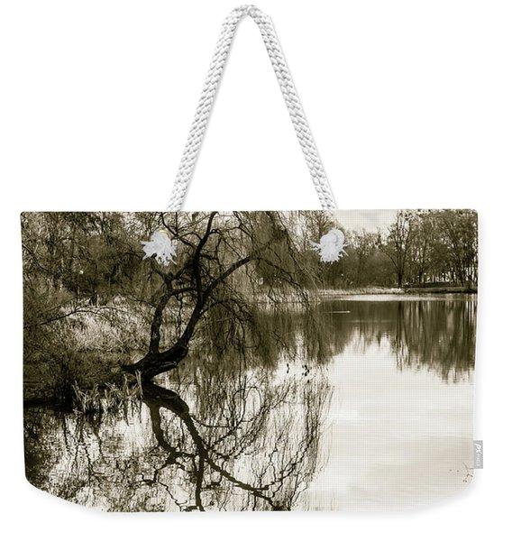 Weeping Willow Tree In The Winter Weekender Tote Bag