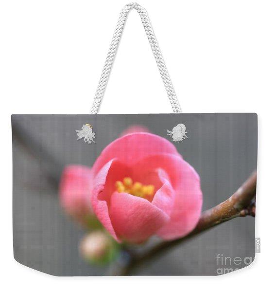 Welcoming Weekender Tote Bag