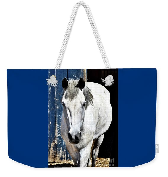 Well, Hello There Weekender Tote Bag