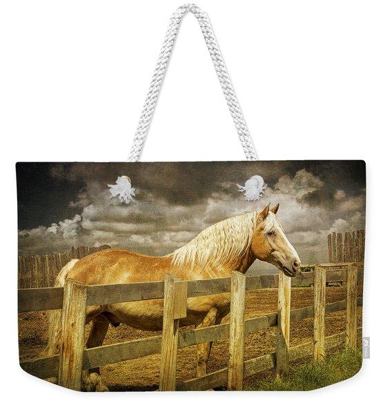 Western Horse In Alberta Canada Weekender Tote Bag