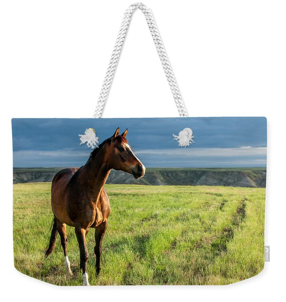 Western Stallion Weekender Tote Bag