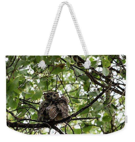 Wet Owl - Wide View Weekender Tote Bag