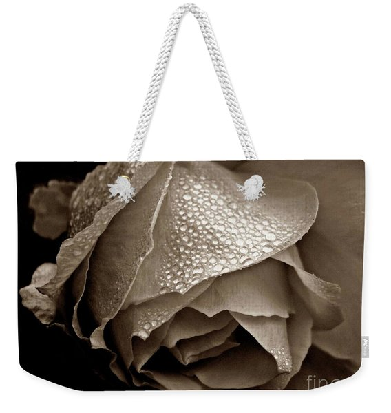 Weekender Tote Bag featuring the photograph Wet Rose In Sepia by Patricia Strand