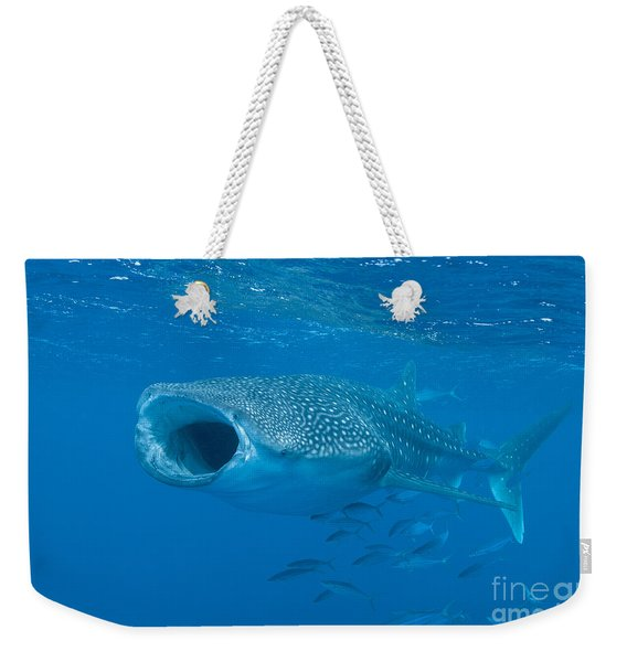 Whale Shark, Ari And Male Atoll Weekender Tote Bag