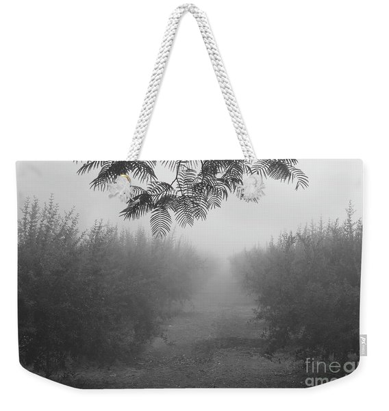 Weekender Tote Bag featuring the photograph What A Foggy Morning 02 by Arik Baltinester