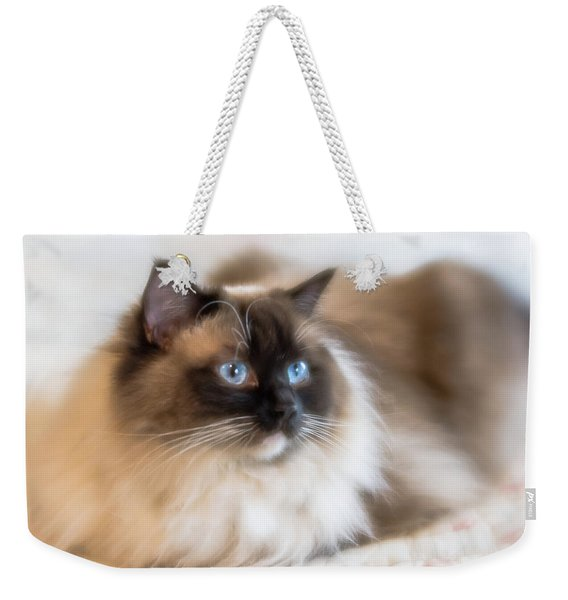 What Does She See Weekender Tote Bag