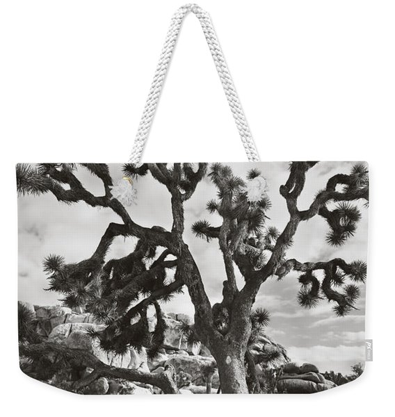 What I Wouldn't Give Bw Weekender Tote Bag