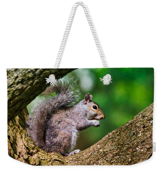 Whata Nut Weekender Tote Bag
