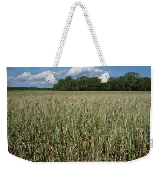 Weekender Tote Bag featuring the photograph Wheat Field by Frank DiMarco