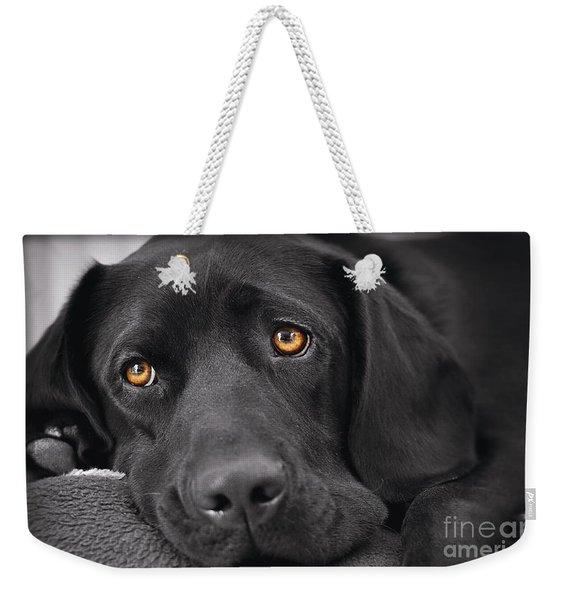 When Dogs Die Weekender Tote Bag