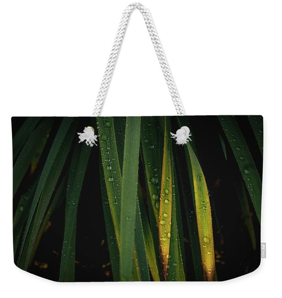 When It Rains Weekender Tote Bag