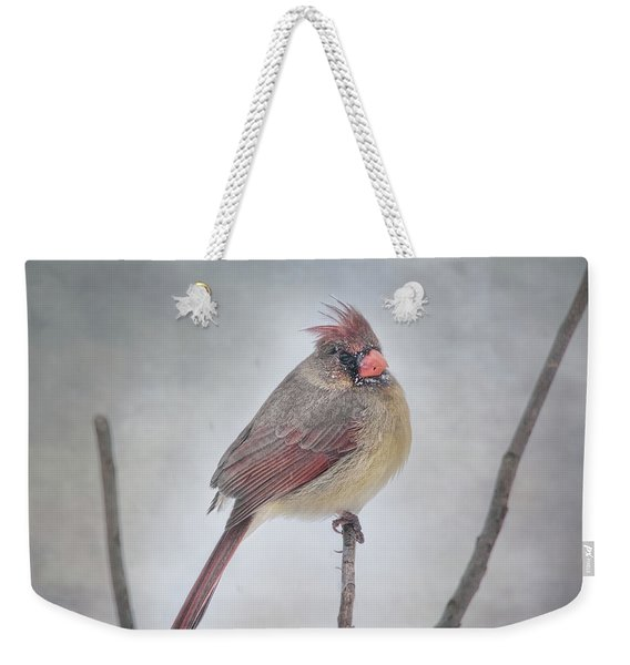 When The Northwind Blows  Weekender Tote Bag