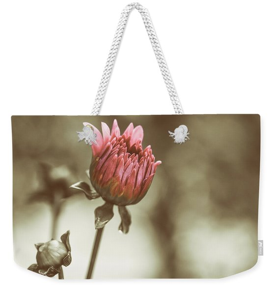 When We Were Young Weekender Tote Bag