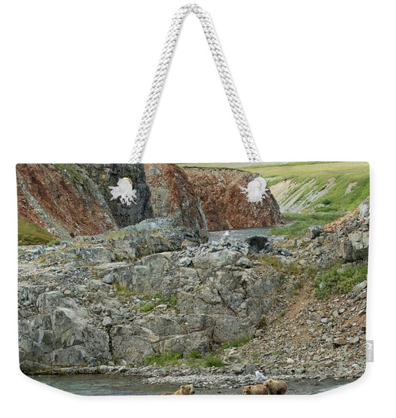 Where The Bears Are  Weekender Tote Bag