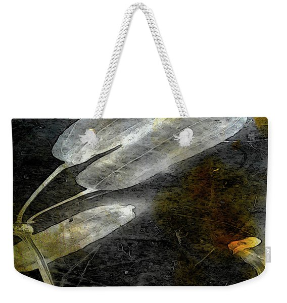 Where There Had Been Light II Weekender Tote Bag
