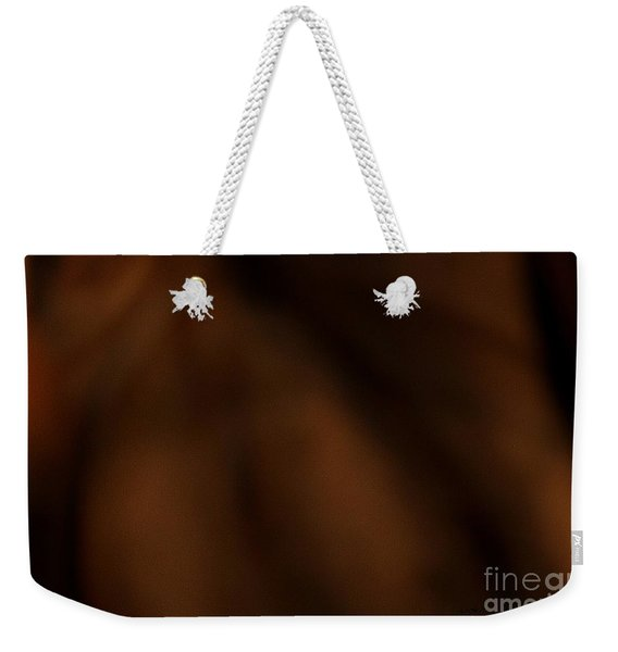 Whispers In The Dark Weekender Tote Bag