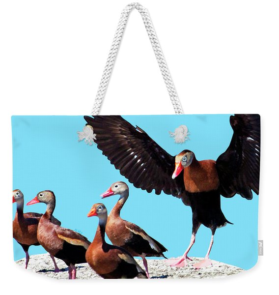 Weekender Tote Bag featuring the painting Whistling Ducks by Marian Cates