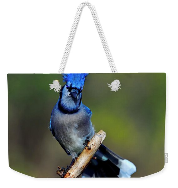 White And Blue Tips Weekender Tote Bag