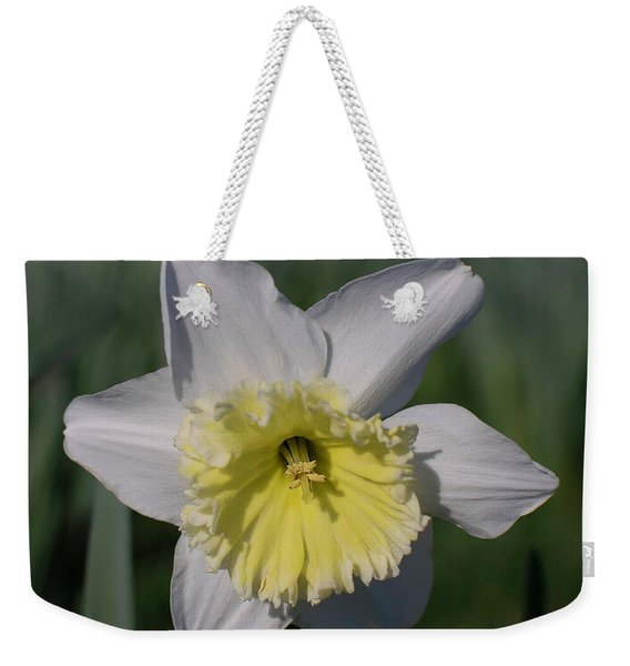 White And Yellow Daffodil Weekender Tote Bag
