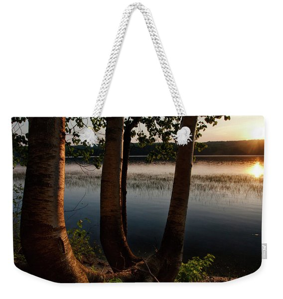 Weekender Tote Bag featuring the photograph White Birch And Kennebec River At Sunset, So.gardiner Me #8360-63 by John Bald