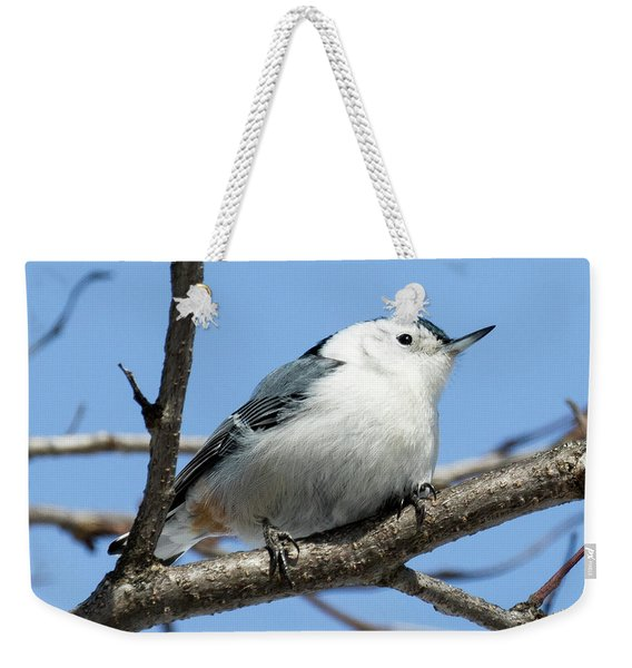 White-breasted Nuthatch Perched Weekender Tote Bag