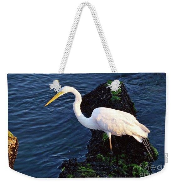 White Egret At Sunrise - Barnegat Bay Nj  Weekender Tote Bag