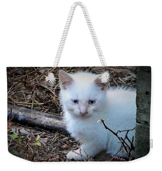 White Feral Kitten Weekender Tote Bag