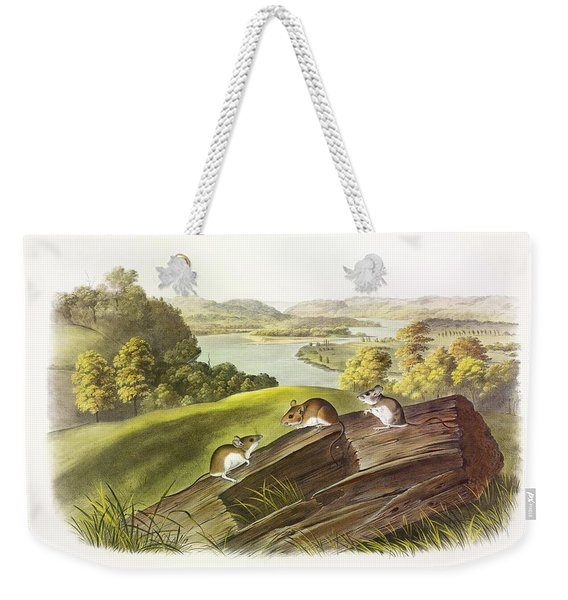 White-footed Mouse Weekender Tote Bag