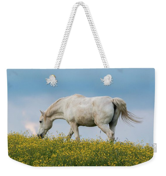 White Horse Of Cataloochee Ranch 2 - May 30 2017 Weekender Tote Bag