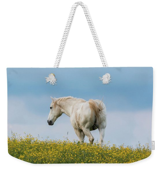 White Horse Of Cataloochee Ranch - May 30 2017 Weekender Tote Bag