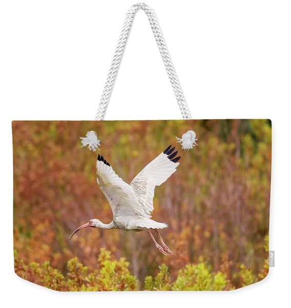 White Ibis In Hilton Head Island Weekender Tote Bag