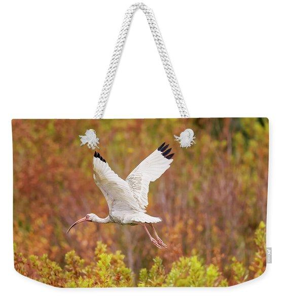 White Ibis In Hilton Head Island Weekender Tote Bag
