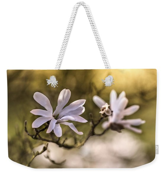 Weekender Tote Bag featuring the photograph White Magnolia by Jaroslaw Blaminsky