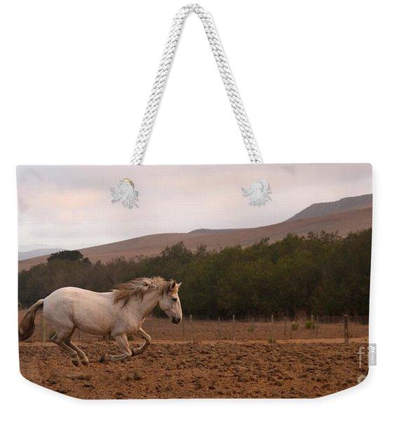 White Mare Gallops #1 - Panoramic Brighter Weekender Tote Bag
