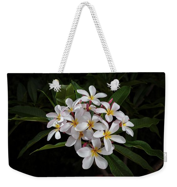 White Plumerias In Bloom Weekender Tote Bag