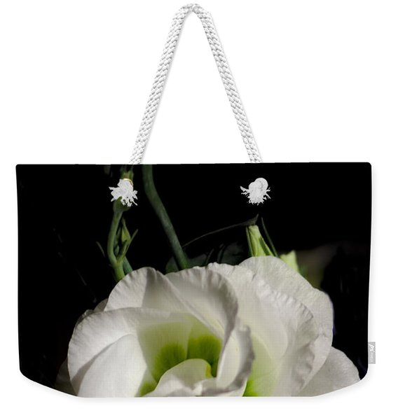 Weekender Tote Bag featuring the photograph White Rose On Black by Jeremy Hayden