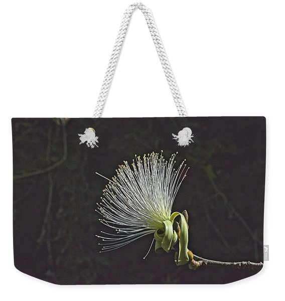 White Shaving Brush Pseudobombax Flower Weekender Tote Bag