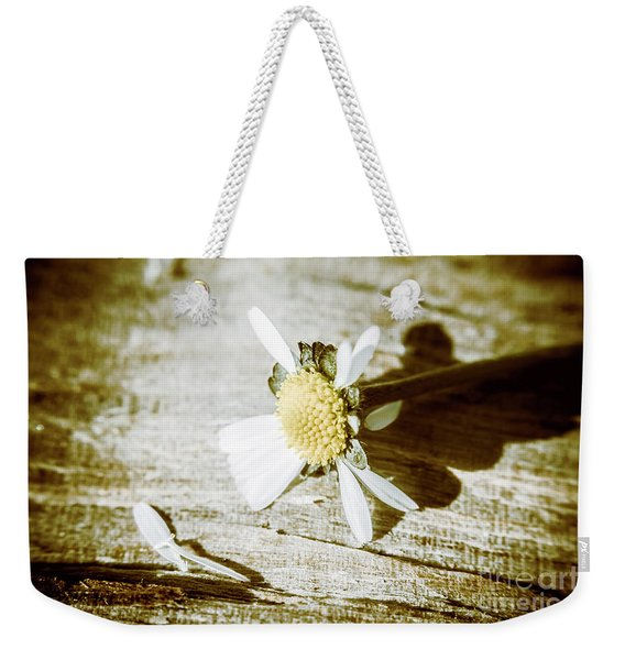 White Summer Daisy Denuded Of Its Petals Weekender Tote Bag