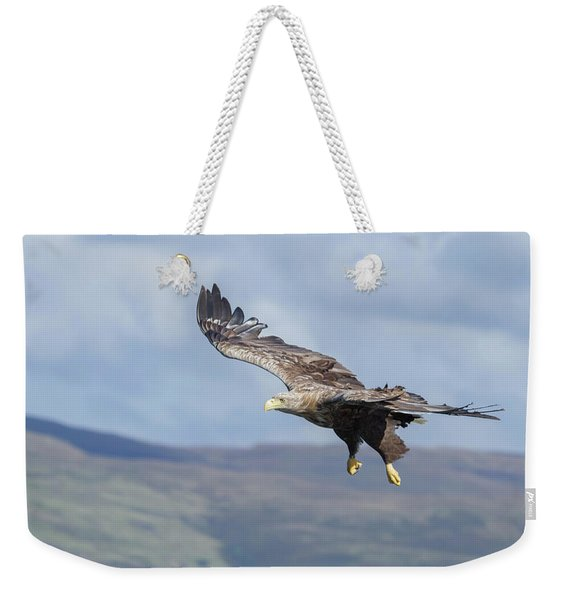 White-tailed Eagle On Mull Weekender Tote Bag