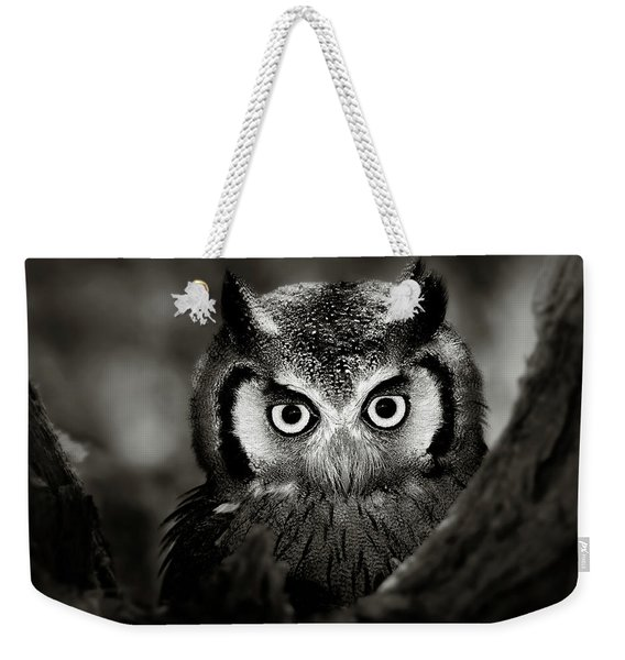 Whitefaced Owl Weekender Tote Bag