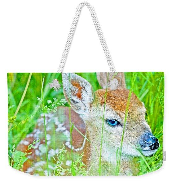 Whitetailed Deer Fawn Weekender Tote Bag